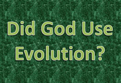 Did God use evolution to create? (artistic text)