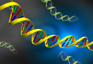DNA origin of life